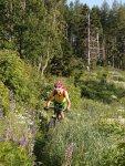 Titelbild des Albums: Hohe Zetz Anger Mountainbike