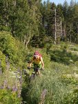 Hohe Zetz Anger Mountainbike (1252 Besuche)