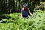 Titelbild des Albums: Klöch Traminerweg Mountainbiketour