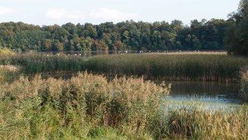 Gajsevsko Jezero