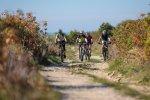 mountainbike biketour slovenia slovenija koper izola Korte Dragonja downhill