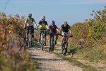 Titelbild des Albums: Mountainbike Sommerausklang Izola / Slowenien 2015 Teil II