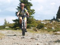 Hochstein Lienz Mountainbike downhill mtb bike trail singletrial